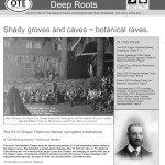 15deep_roots_corrected