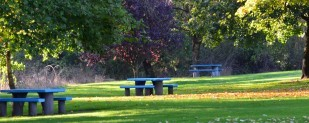 The Santiam Rest Area features a picnic area for motorists.