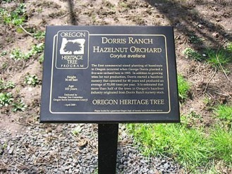 Dorris Ranch