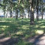 State Fairgrounds Oak Grove