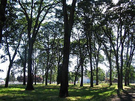Personals in oak grove or