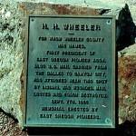 Wheeler Elm