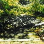 Willamette Stone park