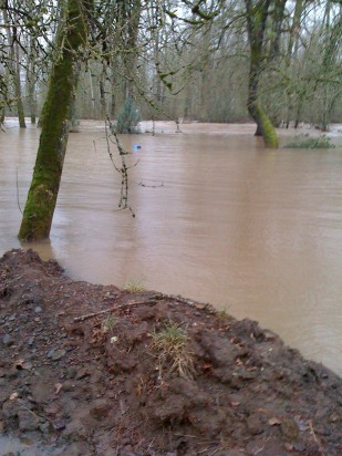 Image of the Santiam River flooding the picnic area of the OTE Santiam rest area on I-5.