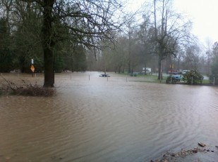 Photo by Nancy Rold, of Santiam River flooding Oregon Travel Experience rest area.
