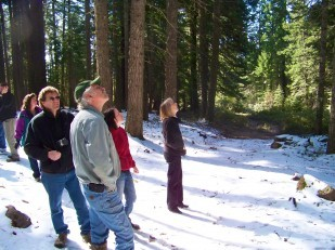 Image of Tub Springs and the Oregon Heritage Tree Committee field trip