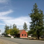 Smokejumper tree & museum