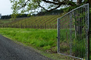 Entrance to Pfeiffer Winery at the end of Jaeg Rd