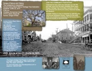 Image of Oregon Travel Experience Heritage Tree Program event at Aurora Colony Black Walnut Heritage Tree