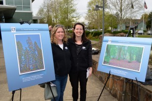 Image of the OTE staff with the 2015 Oregon Heritage Tree posters