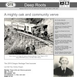 16deep_roots_square