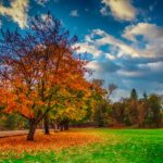 dallas_oregon_autumn