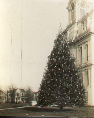 tree-00850510013012